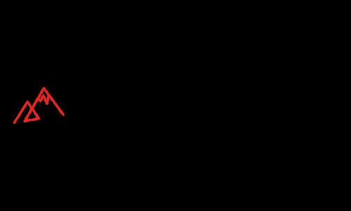 Erfolgskongress Logo